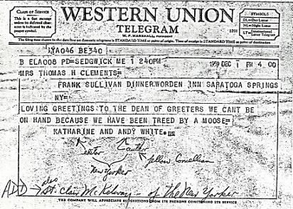 Telegram from the Whites